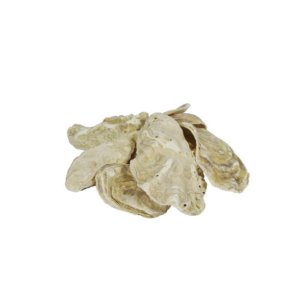 Austernschalen 5kg